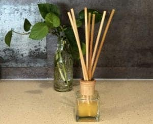 reed diffuser Triona house, plant in background