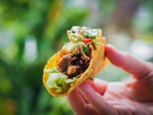 Thai jackfruit taco in someones hand